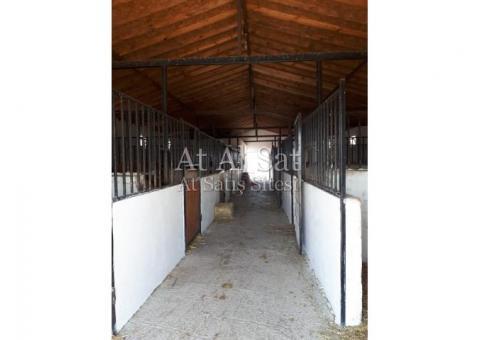 AT PANSİYONU Sınırlı sayıda at pansiyoner alımı yapılacaktır.